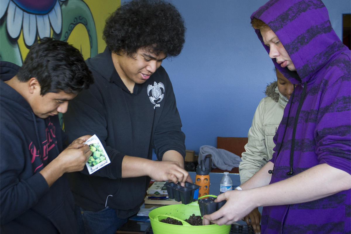 Four students planting seeds in a pot at an off campus event