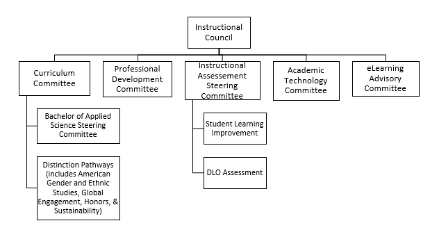 Instructional Council structure